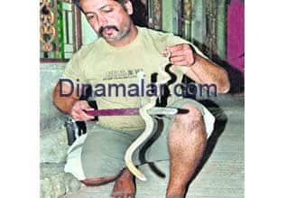 கடலூரில் அரிய வகை வெள்ளை நாகம் : அரசு காப்புக் காட்டில் விடப்பட்டது