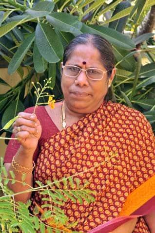 என் வீட்டு தோட்டத்தில் பூவெல்லாம் கேட்டுப்பார் என்பேர் சொல்லும்- -ஜெயா சுந்தரம்