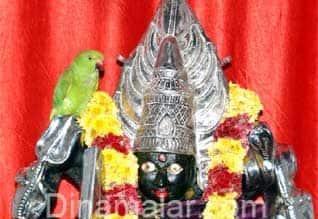 மாரியம்மன் சிலை மீது அமர்ந்திருக்கும் பச்சைக்கிளி : வழிபட்டு செல்லும் பொதுமக்கள்