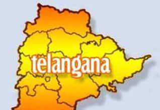 தெலுங்கானா விவகாரத்தில் மத்திய அரசு இழுத்தடிப்பு:எம்.பி.,க்களை டில்லிக்கு அழைத்து ஏமாற்றியது காங்.,Congress put drama in Telengana issue