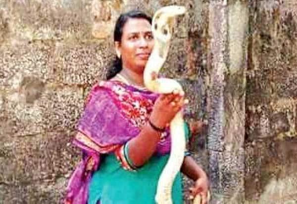 பெண்,Women,  கேரளா,Kerala, வனத்துறை,Forests, நாகம், Cobra, ராஜி, Raji,   மலைப்பாம்பு ,Python, திருவனந்தபுரம், Trivandrum,பாம்பு ,Snake,