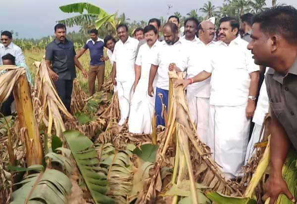 ஒக்கி புயல் ,Oki Storm,கன்னியாகுமரி, Kanyakumari,முதல்வர் பழனிசாமி,  Chief Minister Palanisami, மீனவர்கள், Fishermen,வாழை, Banana,
