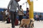 ஜோத்பூர் எக்ஸ்பிரஸ் ரயிலுக்கு  'லஷ்கர்' பெயரில் குண்டு மிரட்டல்
