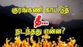 Tamil Celebrity Videos குரங்கணி காட்டுத் தீ... நடந்தது என்ன?