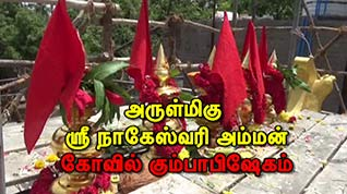தாம்பரம் கோவில் கும்பாபிஷேகம்