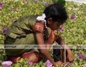 உங்க நிலம் சும்மா கிடக்குதா?!