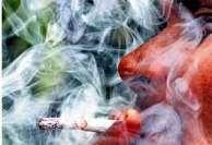 விட்டுத் தான் பார்ப்போமே! மே 31-உலக புகையிலை எதிர்ப்பு தினம்
