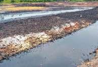 ஆந்திர பழச்சாறு தொழிற்சாலையின் கழிவுகளால்  தமிழக நீர்நிலைகள் நாசம்