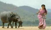 சமந்தா புகைப்படம் வெளியானதற்கு படக்குழு புகார்