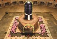 தியானலிங்கத்தில் 17வது பிரதிஷ்டை தினக் கொண்டாட்டங்கள்