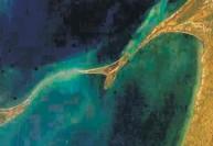 ராமர் பாலத்தை கட்டியது யார்?  அக்டோபரில் துவங்குகிறது ஆய்வு