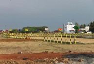 மனை விற்பனையை பதிய வேண்டாம் : சார் - பதிவாளர்களுக்கு உத்தரவு