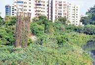 சென்னை போக்குவரத்து நெரிசலுக்கு விடிவு
