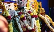 சென்னை கோபாலசுவாமி கோயிலில் கிருஷ்ண ஜெயந்தி விழா