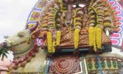 திருவண்ணாமலை தீப விழா: ரிஷப வாகனத்தில் சுவாமி உலா!