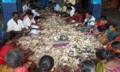 காரைக்கால் கயிலாசநாதர் கோவில் அன்னதான உண்டியல்