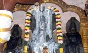 திருநாகேஸ்வரம் நாகநாத சுவாமி கோவிலில் ராகு பெயர்ச்சி