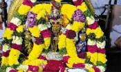திருத்தணி முருகர் வீதியுலா