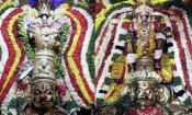 திருநாங்கூரில் 11 தங்க கருடசேவை: பல்லாயிரக்கணக்கான