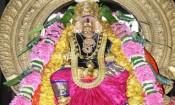 சமயபுரம் மாரியம்மன் தைத் தெப்பத் திருவிழா