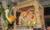வசந்த உற்சவம்: அண்ணாமலையாருக்கு பொம்மை பூ கொட்டும்