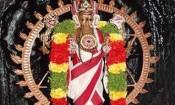 கோட்டை பெருமாள் கோவிலில் சக்கரத்தாழ்வார் ஜெயந்தி விழா