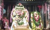 பேரூர் பட்டீஸ்வரர் கோவிலில் ஆனி திருமஞ்சன திருவிழா