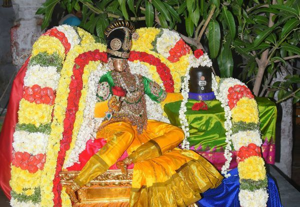 தீர்த்தீஸ்வரர் கோவிலில் நவராத்திரி உற்சவம்