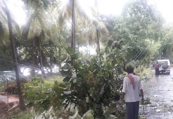 Varadama River,Gaja Storm, Varadamanathi Flood, பழநி அணை, வெள்ளம், வரதமா நதி, பழநி வரதமாநதி, பழநி வரதமாநதி அணை , கஜா புயல்,  வரதமாநதி வெள்ளம்,வெள்ளப்பெருக்கு, பழநி,  Palani Dam, Flood, Varathamanathii, Palani Varadammanathi, Palani Varadammanathi Dam,  Palani,