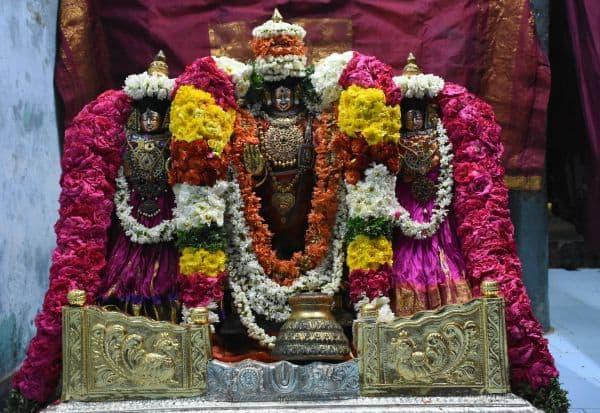 ராஜகோபால சுவாமிக்கு சிறப்பு அலங்காரம்