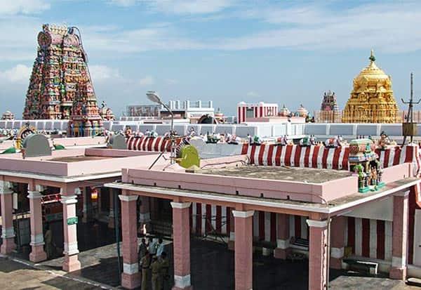 பழநி,திருக்கல்யாணம்,தேரோட்டம்