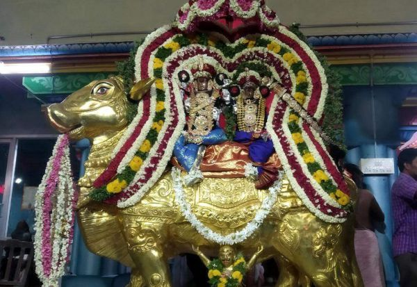 திருநள்ளார் சனீஸ்வரர் கோவிலில் ரிஷப வாகனத்தில் சுவாமி வீதியுலா