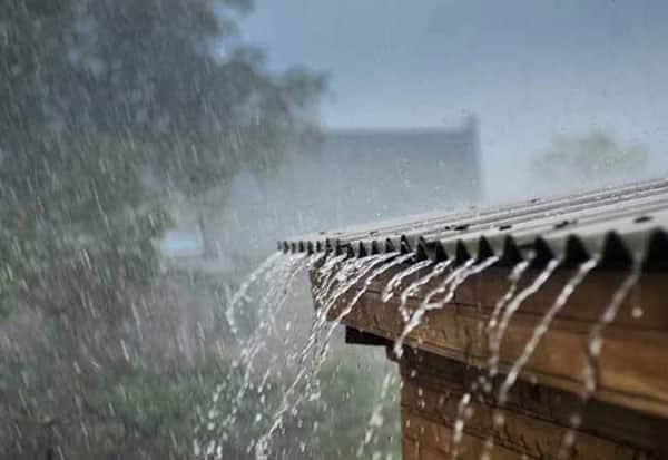 TN,Tamilnadu,rain,தமிழகம்,தமிழ்நாடு,மழை, கோவை, நீலகிரி,