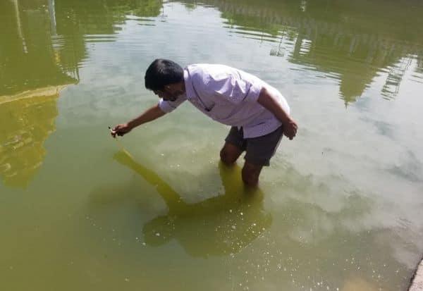 அனந்த சரஸ் குளத்து நீர் மத்திய குழுவினர் ஆய்வு