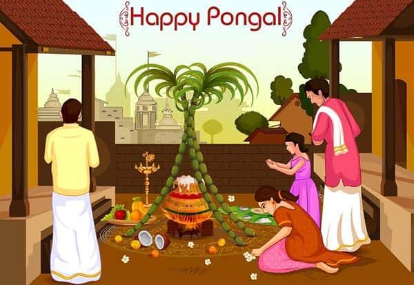 Pongal, Holiday, பொங்கல், விடுமுறை