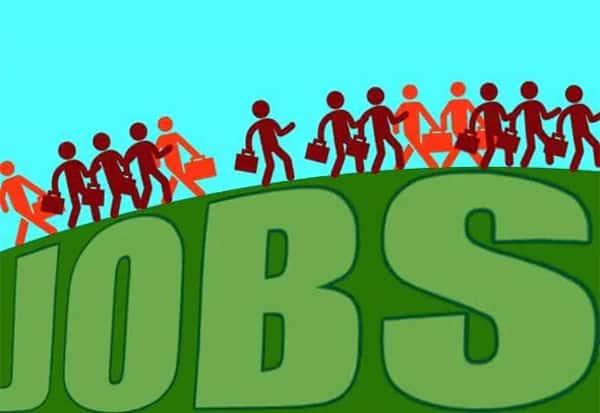 Employment, CMIE, Survey, MaytoAugest, வேலைவாய்ப்பு, சிஎம்ஐஇ, ஆய்வு,