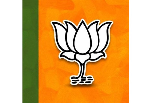 B.J.P,BJP,Bharatiya Janata Party,பா.ஜ, பவார், தி.மு.க., - எம்.பி.,,