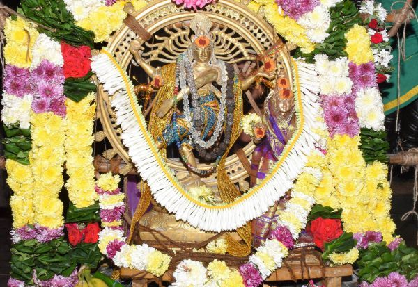 செஞ்சியில்  ஆருத்ரா தரிசன விழா