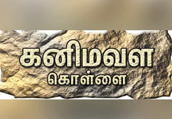 பரிசீலனை:கல் குவாரிகளை மீண்டும் ஏலத்தில் விட  வருவாய் இழப்பை தவிர்க்க நடவடிக்கை