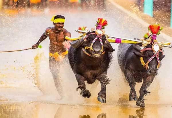உசைன் போல்டை மிஞ்சும் வேகம்: அசர வைத்த கர்நாடக இளைஞர் Tamil_News_large_2481162