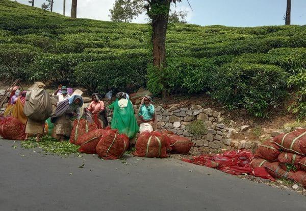 சமூக விலகல் கடைபிடிக்க சுகாதாரத்துறை 'அட்வைஸ்'