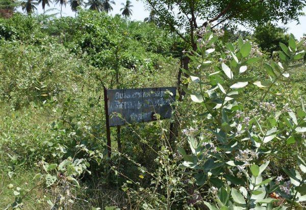 புதரில் மறைந்த உடற்பயிற்சி மையம்: சமூக விரோதிகளின் கூடாரமானது