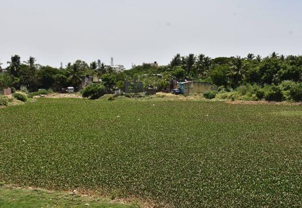 400 ஏக்கர் வெறும் 3 ஆன கொடுமை ஒரு ஏரி குட்டையான கதை தான் இது!