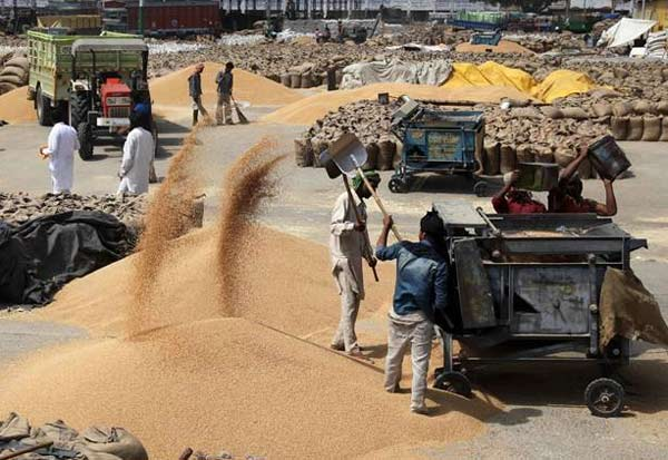 Migrant Workers, Free Food Grain, migrants