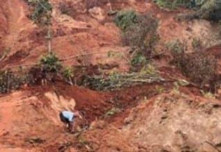 மூணாறில் நிலச்சரிவு: கயத்தாறை சேர்ந்த 55 பேரின் கதி ...