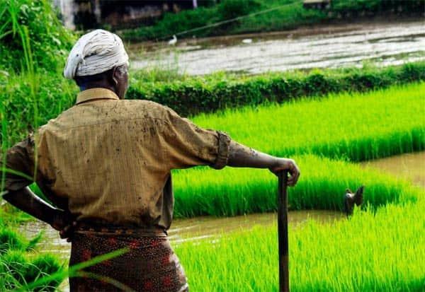 agri Bills, tabled, Parliament