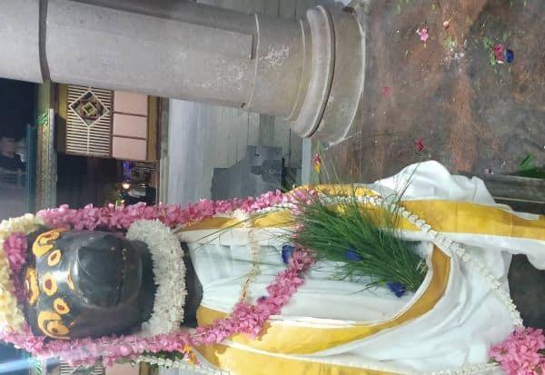 சோளீஸ்வரர் கோவிலில் நந்திக்கு பிரதோஷ வழிபாடு