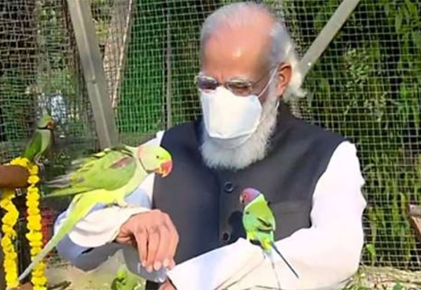 PM Modi, jungle_safari, Parrots, Sardar Patel zoological park