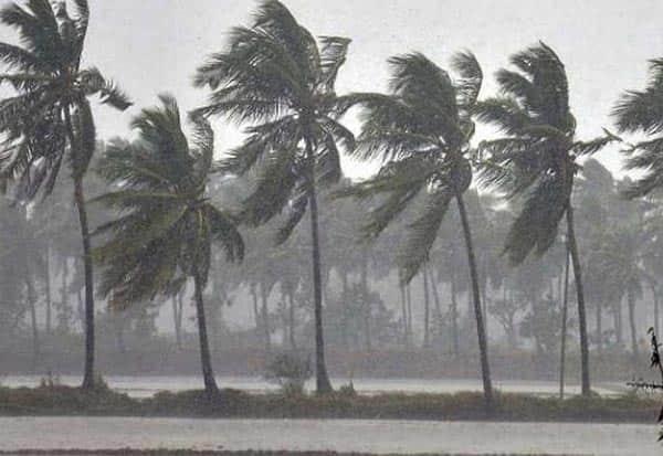 nivar, cyclone, central team , examine, damage, நிவர், புயல், மத்தியக்குழு, வருகை, தமிழகம்