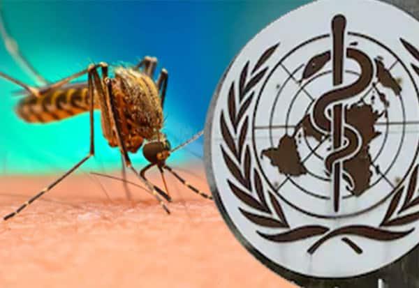 India, Malaria, ImpressiveGains, WHO, உலக சுகாதார நிறுவனம், மலேரியா, இந்தியா, பாராட்டு